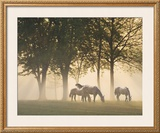 Horses in the Mist Print by Monte Nagler