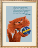 Voro Cat Smiling Framed Giclee Print
