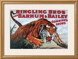 Ringling Bros and Barnum & Bailey Prints