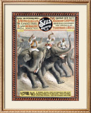 Sells Brotheres, Elephant Race Framed Giclee Print