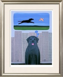 City Dog With Country Dreams Limited Edition Framed Print by Ken Bailey