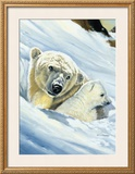 Polar Bear Mama Prints by Renato Casaro