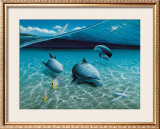 The Chase, Maui Dolphins Posters by Mark Mackay