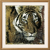 Tiger Portrait Art by Fabienne Arietti