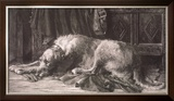 Irish Wolfhounds Limited Edition Framed Print by Herbert Dicksee