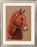 Greencoat Framed Giclee Print by Lorrie Beck