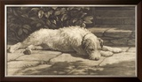 The Terrier Limited Edition Framed Print by Herbert Dicksee