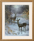 Early Snow Print by Edward J. Bierly