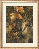 Autumn Eyes Prints by Collin Bogle