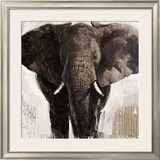Elephant Prints by Emmanual Michel