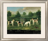 Two Couples of Hounds in a Park Posters by Francis Sartorius