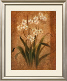 Orchid Study Prints by Tan Chun