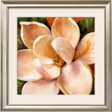 Magnolia Glow II Posters by Liv Carson