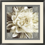 Dahlia Icon II Print by Christine Elizabeth