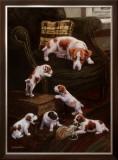 Still No Rest Framed Giclee Print by Susan Sponenberg