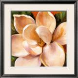 Magnolia Glow II Print by Liv Carson