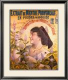 Extrait de Menthe Provencale Framed Giclee Print