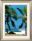 Spot d'Haleiwa Prints by Sylvain Cazenave