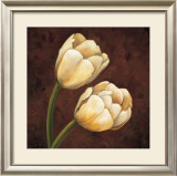 Ornamental Tulips Print by Andres Gonzales