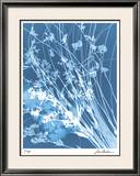 Flower Shadow IV Limited Edition Framed Print by Lois Bender