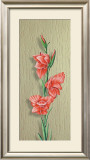 Orchid Poster by M. Allegri