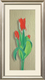 Tulip Prints by M. Allegri