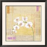 Orchid Memories II Posters by Linda Wood