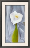 Calla Lilly On Grey Prints by Georgia O'Keeffe