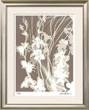 Flower Shadow I Limited Edition Framed Print by Lois Bender