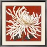Spider Mum I Print by Judy Shelby