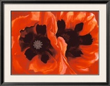 Oriental Poppies, c.1928 Poster by Georgia O'Keeffe