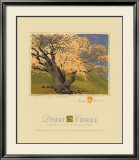 The Bishop's Apricot Tree Poster by Gustave Baumann