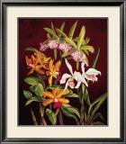 Orchid Trio II Prints by Rodolfo Jimenez