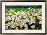 I Love Daisies Posters by Liliane Fournier