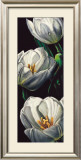 Dewdrop Tulips Posters by Alma&#39;ch 