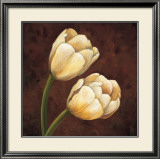 Ornamental Tulips Poster by Andres Gonzales