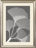 Ginkgos II Prints by Steven N. Meyers