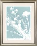 Flower Shadow II Limited Edition Framed Print by Lois Bender