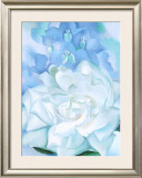White Rose W/ Lakspur No.2 Prints by Georgia O'Keeffe