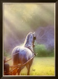 Rays of Light Framed Giclee Print by Suzanne Sturgill
