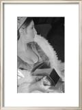 Barbara Streisand Sitting Posters