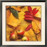 First Fall VI Prints by Bill Philip
