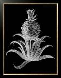 Pineapple Noir II Prints