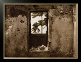 Palm View I Prints by C. J. Groth
