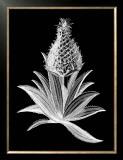 Pineapple Noir I Poster