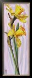 Two Yellow Daffodils Art by Maya Nishiyama