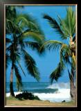 Spot d'Haleiwa Posters by Sylvain Cazenave