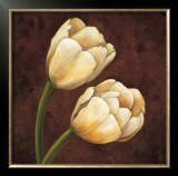 Ornamental Tulips Prints by Andres Gonzales