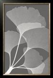 Ginkgos II Posters by Steven N. Meyers