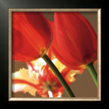Soiree III Prints by S. G. Rose